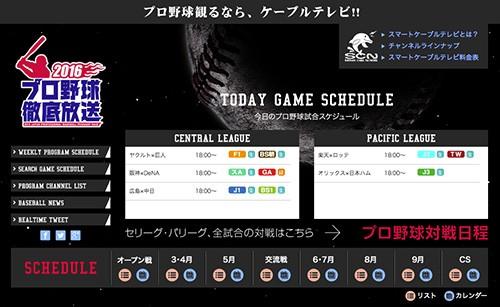 baseball_web_w500